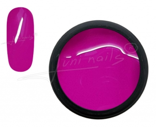 Painting UV Gel Art Fuchsia 5ml